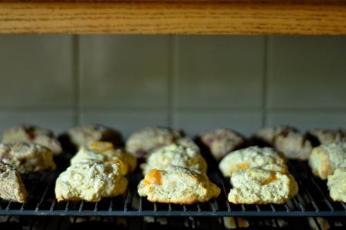 gf scones 1