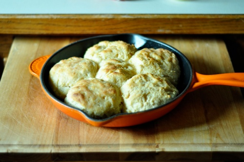 b biscuits 1