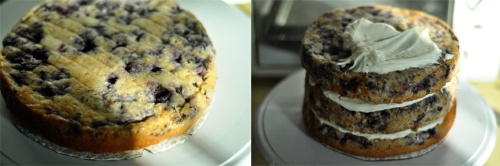 blueberry muffin cake 7