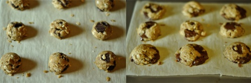 orange choc cookies 1