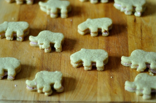 hippo cookies 5